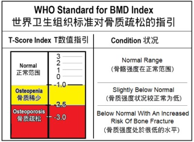 WHO Bone Mineral Density Index
